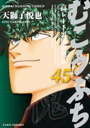 むこうぶち 高レート裏麻雀列伝(45)