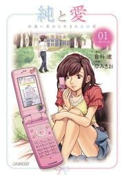 純と愛(ビッグコミックス)