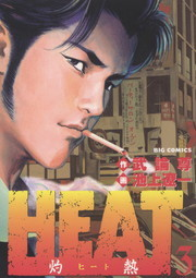 HEAT-灼熱- 3
