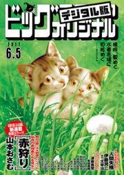 ビッグコミックオリジナル 2017年11号(2017年5月20日発売)